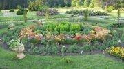 Центральный ботанический сад Национальной академии наук Белоруссии